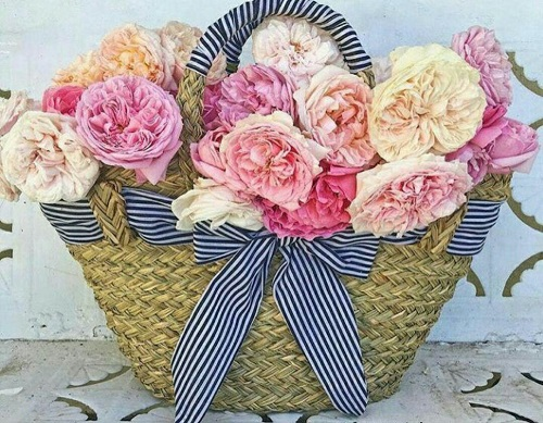 عکس سبد گل رنگی